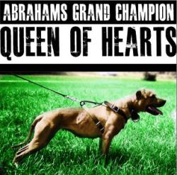 Abraham's Queen of Hearts