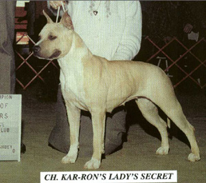 Ch. Kar-Ron's Lady's Secret
