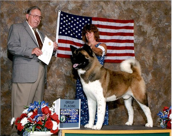 AKC/CAN/UKC CH Royal's Wanna Be A Cowboy