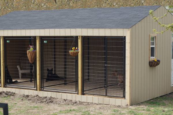 Cold weather dog house page 1 for Best insulated dog house for cold weather
