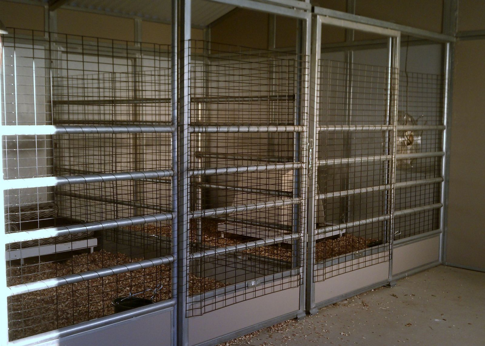 Ava And Cisco S New Kennels A Converted Horse Stall