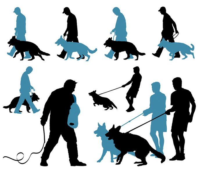 CAD image of various GSDs in training
