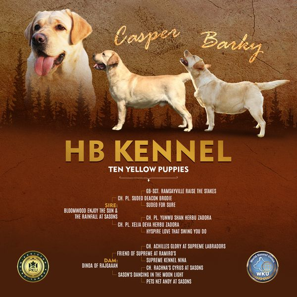 HB Kennel
