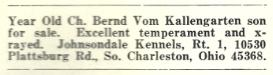 Bernd Vom Kallengarten (1968 Classified ad for Bernd Son)