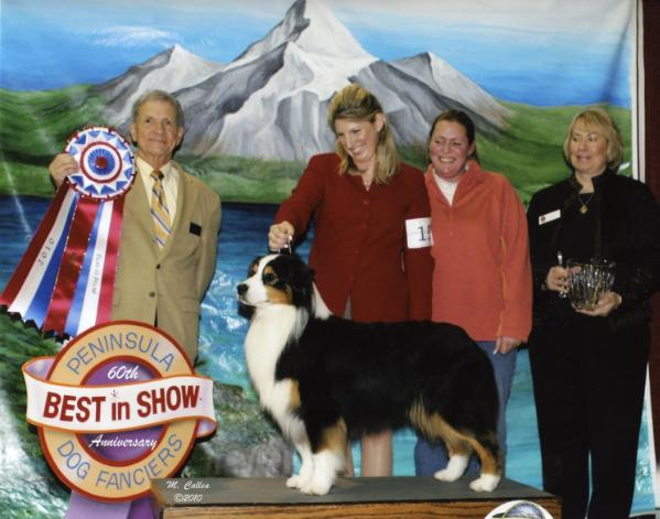 BIS GCH AKC/ASCA/CKC Whidbeys Moonlight Frost