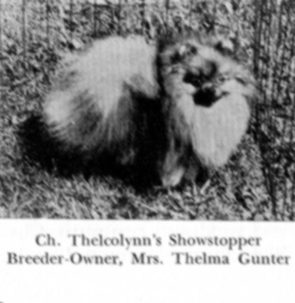 CH Thelcolynn's Showstopper