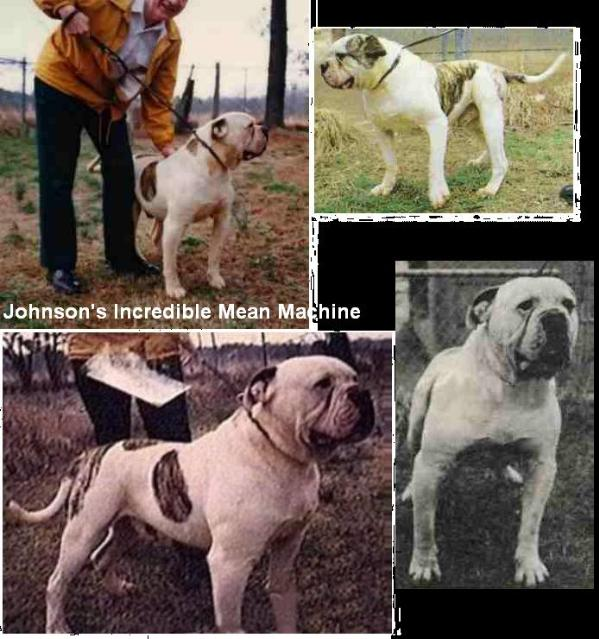 Johnson's Incredible Mean Machine