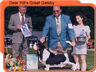 E BISS AM/CAN CH Deer Hill'S Great Gatsby