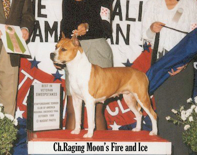 CH. Raging Moon's Fire And Ice
