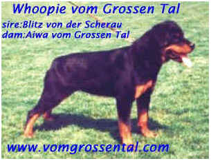 Whoopie Vom Grossental
