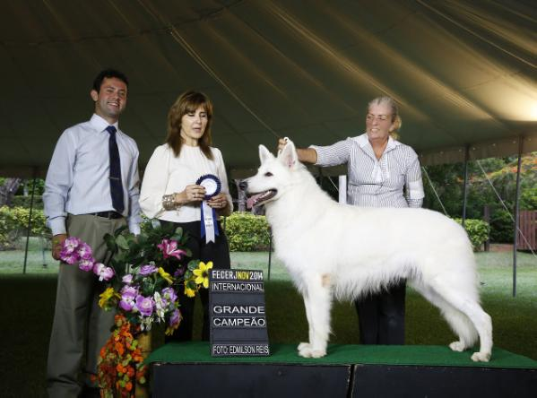 Best Br 2014  Br Multi Ch. Intl Ch. WW 2013 Best Minor Puppy ICE AKBO-Parchovany