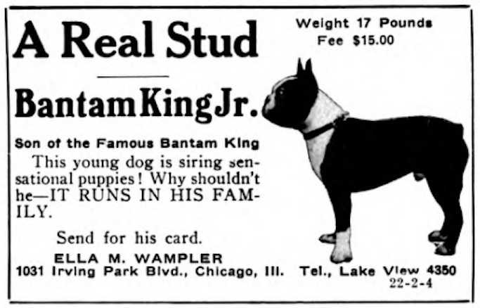 Bantam King Jr. 236344