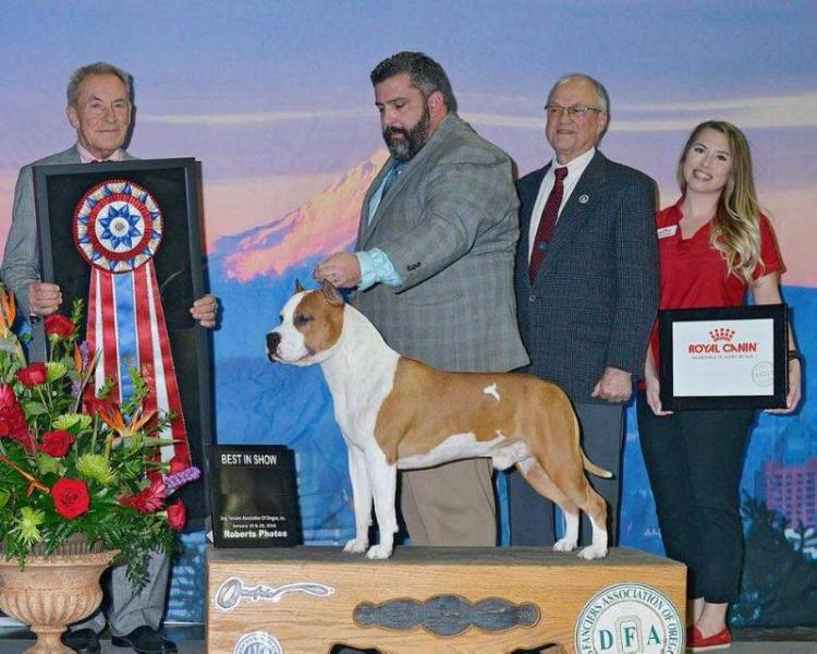 MBIS MBISS GCH Alpine's LBK Living on the road