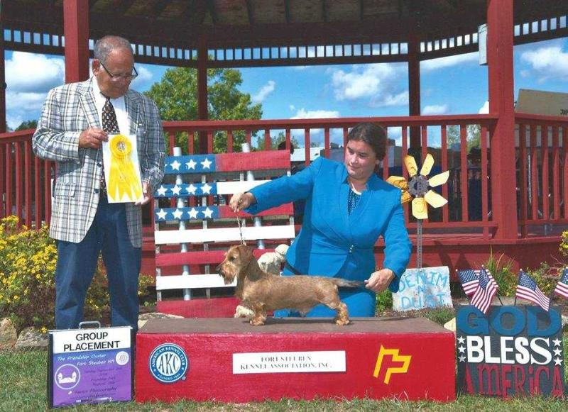 Multiple Group Placing GCHB EJ's Fancied Up Solo Pup MW
