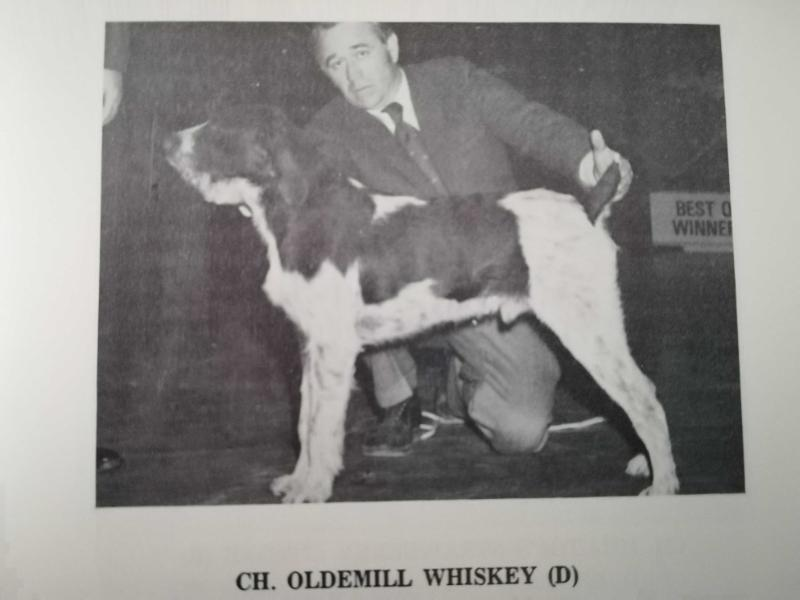 CH OLDEMILL WHISKEY  (D)