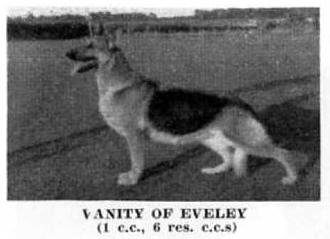 Vanity of Eveley